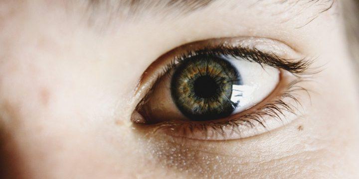 30 viktiga fakta om synen
